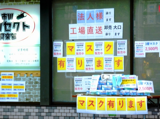 #01A市川インセクト倶楽部.jpg