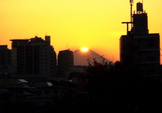 #01C3328昨年の富士見坂.jpg