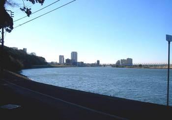 #02江戸川下流方向を望む.jpg