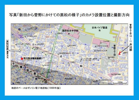 #05市川市新田・菅野の黒松林.jpg