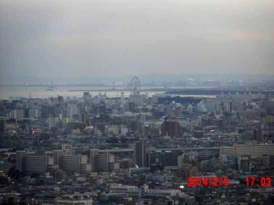 #08C456葛西臨海公園.jpg