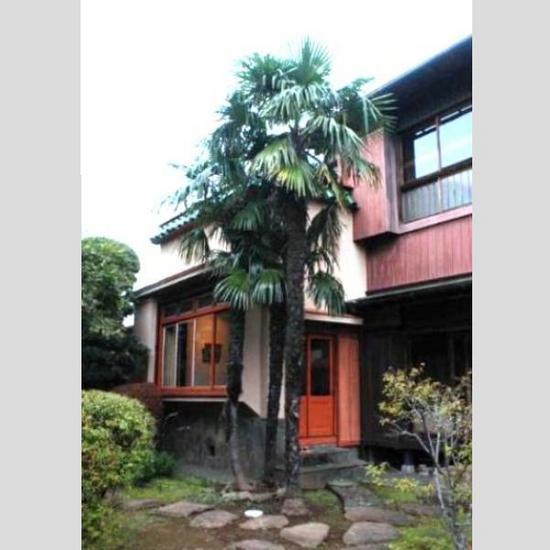 #15旧片桐邸・洋間(庭から)千葉観光WEB.jpg