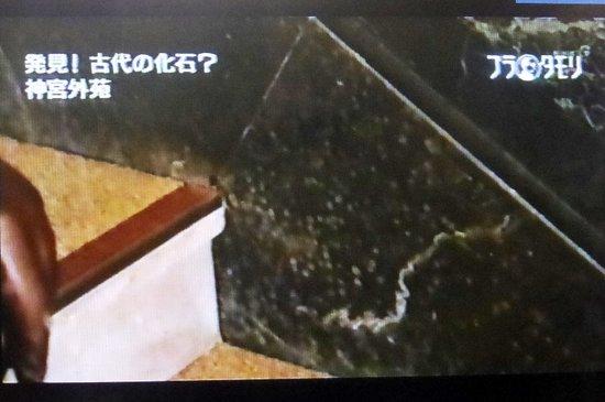 #20ブラタモリトレース絵画館編.jpg