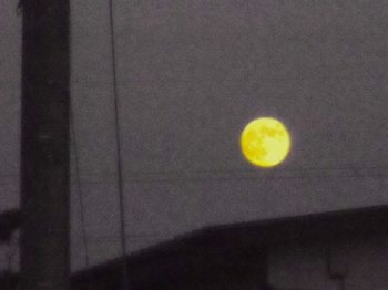 #A09、14番目の月江戸川河口からG2434.jpg