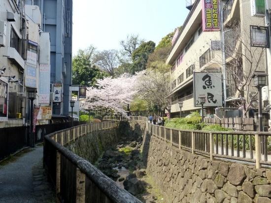 $04王子駅親水公園口からの眺めP308.jpg