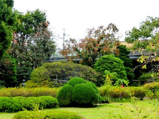 &04芳澤ガーデン実写151031_124153_0.jpg