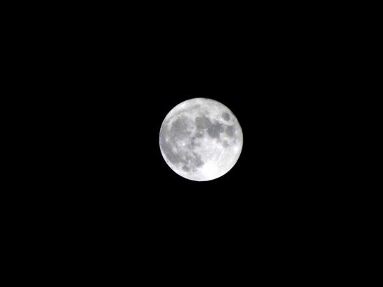 A中秋の名月P1070411B.jpg