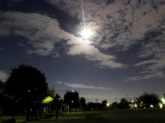 A中秋の名月P417B.jpg